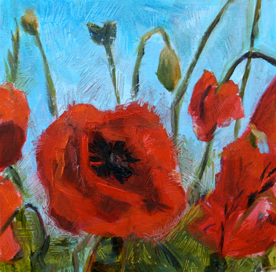 Poppies in June - oil painting by Anikó Makay