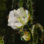 Cactus flower-oil painting by Anikó Makay